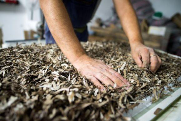 Phee entwickelte ein neues Material: getrocknetes Seegras