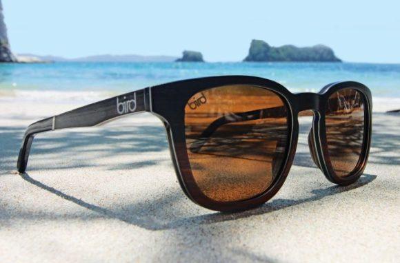 Bird sunglasses: Wren_NZbeach