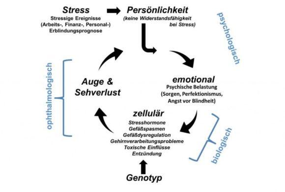 Uniklinik Magdeburg: Studie von Bernhard Sabel et al zu Stress und Sehverlust