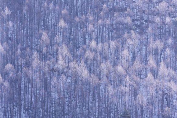 Eyevan Brillen: Lange Winter