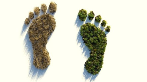 """""""Ökologischer Fußabdruck"""" jedes Einzelnen beim Konsum"""