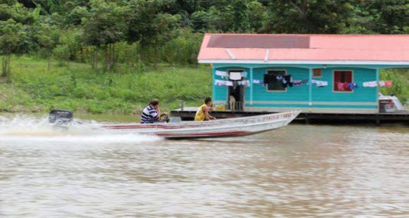 EinDollarBrille - 2019 Brasilien - Amazonas