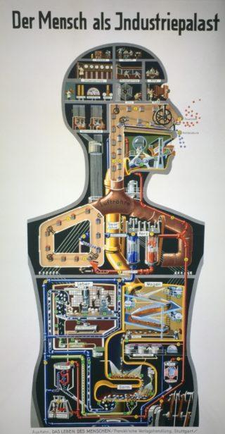 Bauhaus - Industriepalast Mensch - CH
