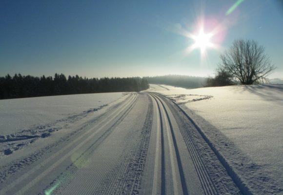 Auch im Winter hat die Sonne Kraft