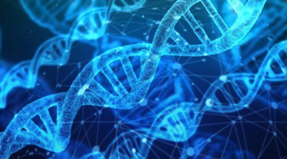 DNA der Dinge - Alltagsgegenstände als Datenspeicher
