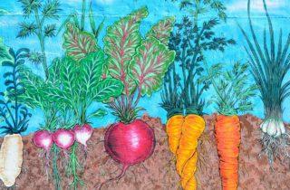 Wandbild Gemüse
