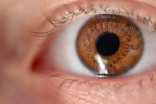 Pupillengröße Auge