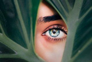 Kontaktlinsen Webinar Spectaris