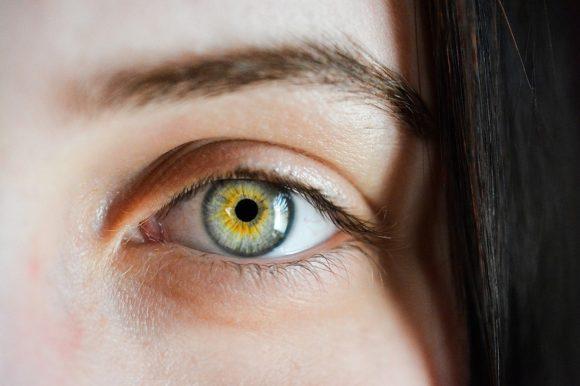Auge Iris