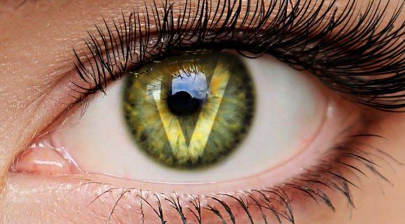 Vision One Optics