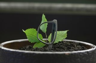 Rolf Spectacles - Bohnenbrille Substance - European Green Award 2021