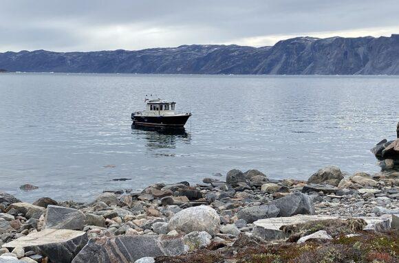 Bobo's Optik auf Grönland - mit dem Boot an der Küste entlang