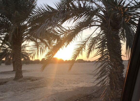 Dubai Landschaft