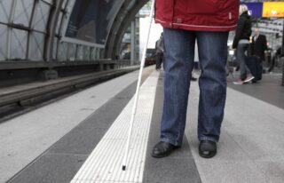 Woche des Sehens 2021: Leitsysteme Langstock DBSV-Friese